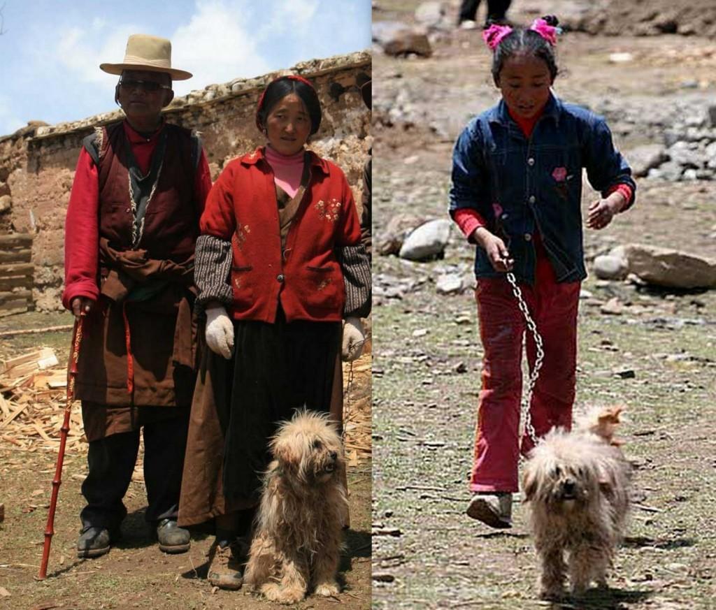 Gyan Tibet