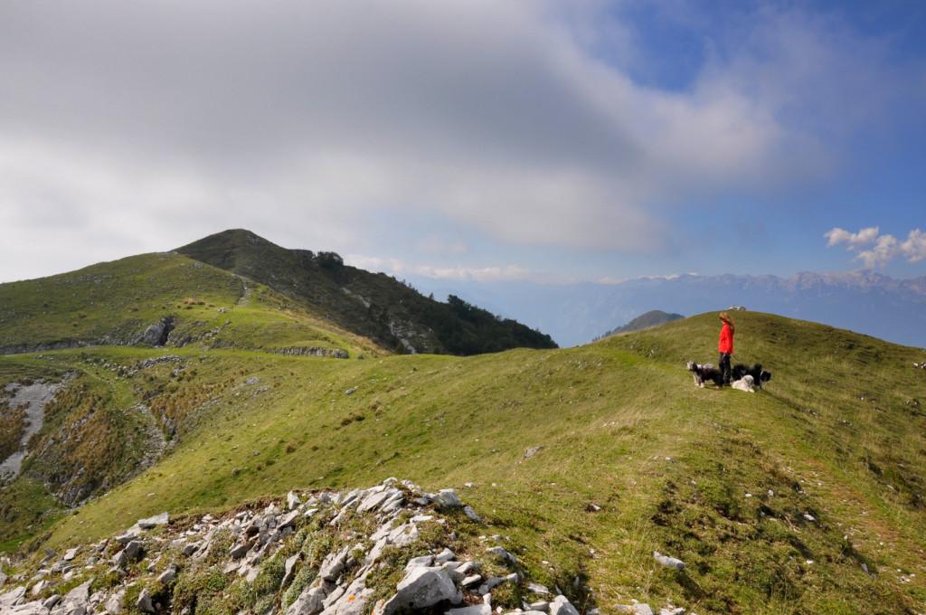 Soriška planina 1