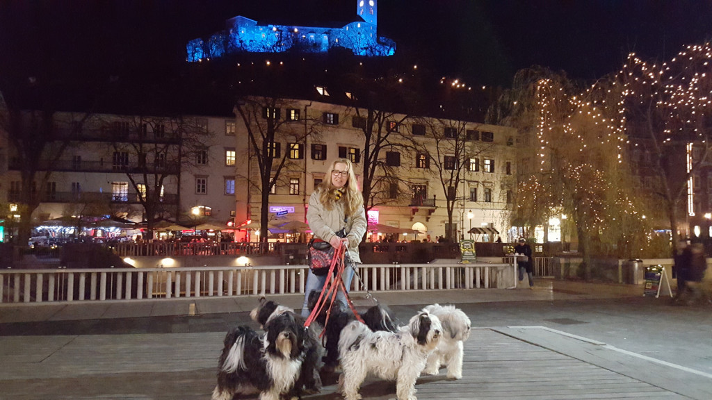 Ljubljana dec 2015