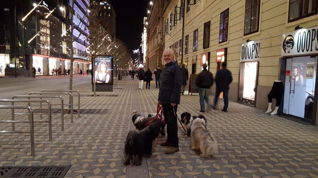 Ljubljana dec 2015 3