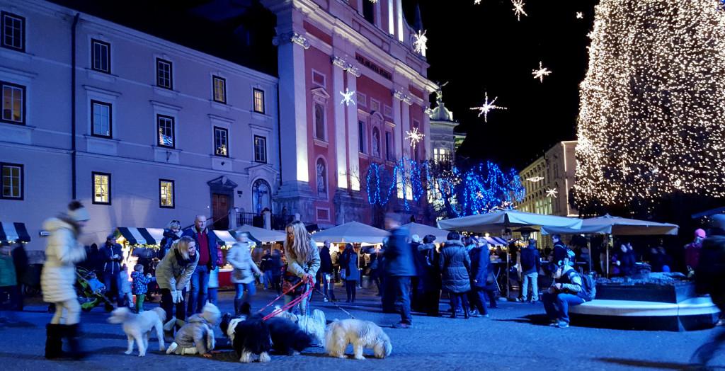 Ljubljana dec 2015 4