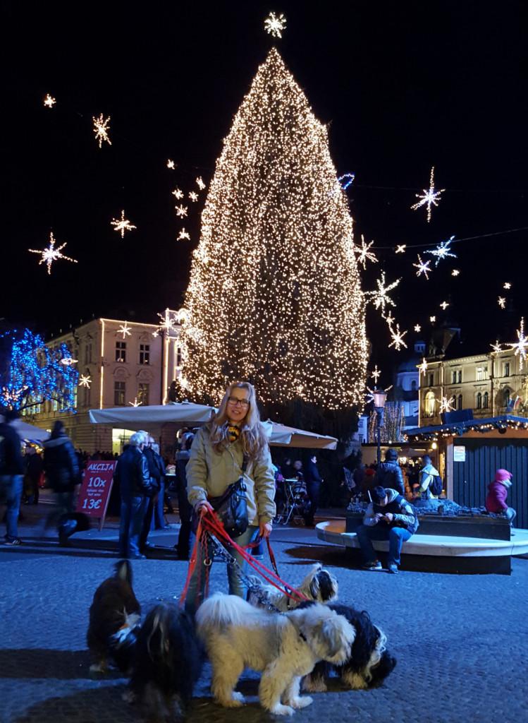 Ljubljana dec 2015 5