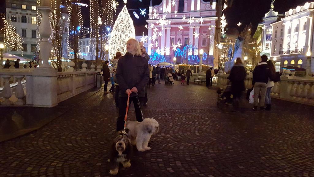Ljubljana dec 2015 6